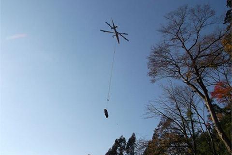 昨年度の台風23号による京都での倒木を搬出しました